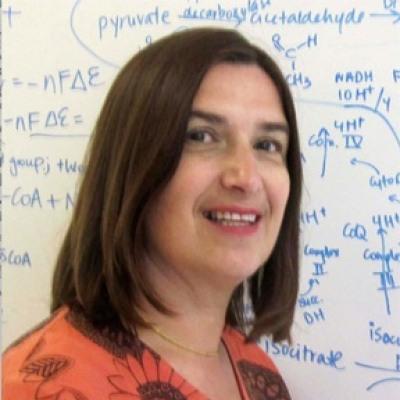 Patricia J. Johnson, PhD
